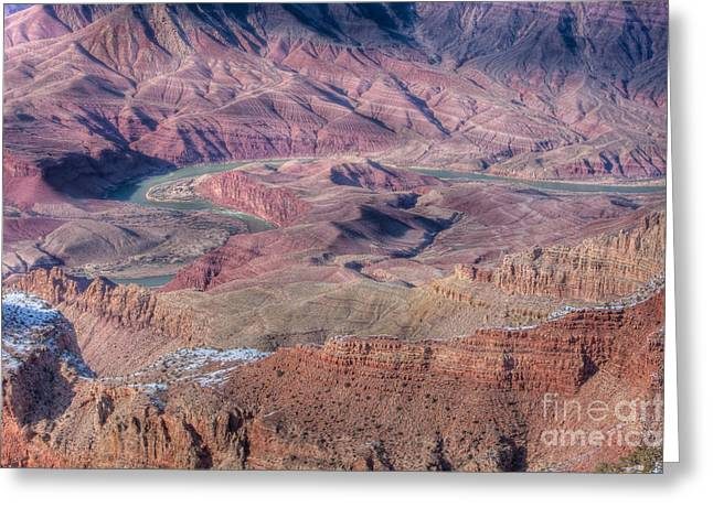 Grand Canyon Lipan Point Greeting Card by Clarence Holmes