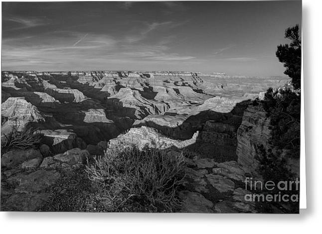 Tricks Greeting Cards - Grand Canyon National Park Spring Sunset BW Greeting Card by Wayne Moran