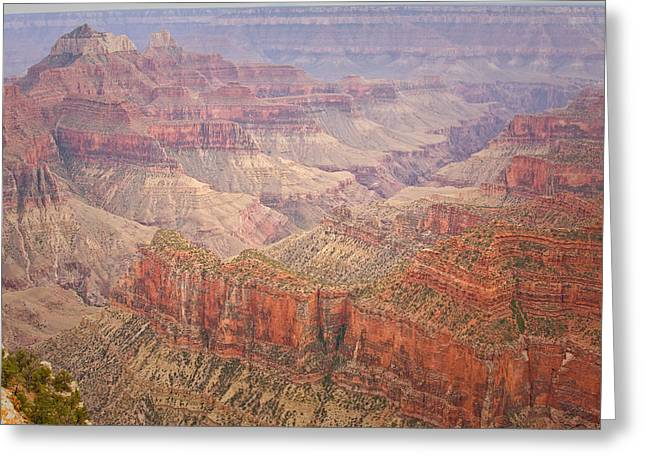 The Grand Canyon Greeting Cards - Grand Canyon North Rim Greeting Card by James BO  Insogna
