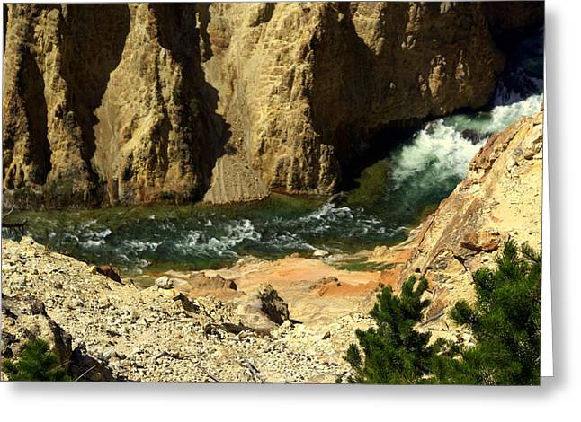 Grand Canyon Of The Yellowstone 3 Greeting Card by Marty Koch