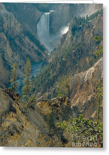 The Grand Canyon Greeting Cards - Grand Canyon Of The Yellowstone Greeting Card by Farrell Grehan