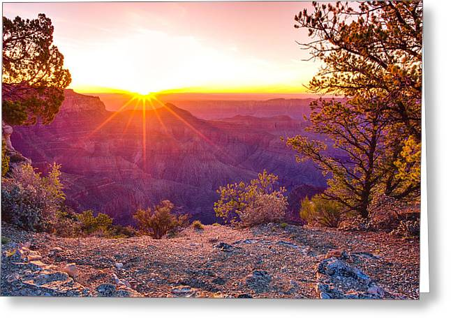 North Rim Greeting Cards - Grand Canyon Sunrise Greeting Card by Scott McGuire
