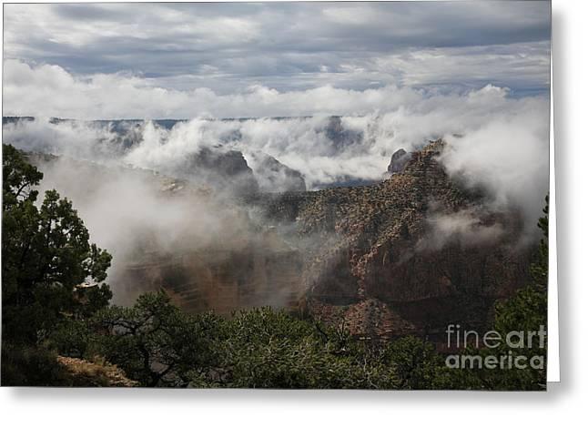 Moran Greeting Cards - Grand Canyon Greeting Card by Timothy Johnson