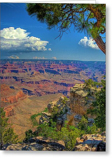 Grand Canyon Vista Greeting Card by William Wetmore