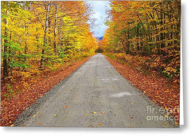 Grand Finale Greeting Card by Catherine Reusch  Daley