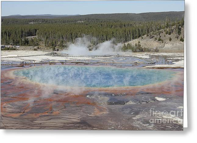 Grand Prismatic Spring, Midway Geyser Greeting Card by Richard Roscoe