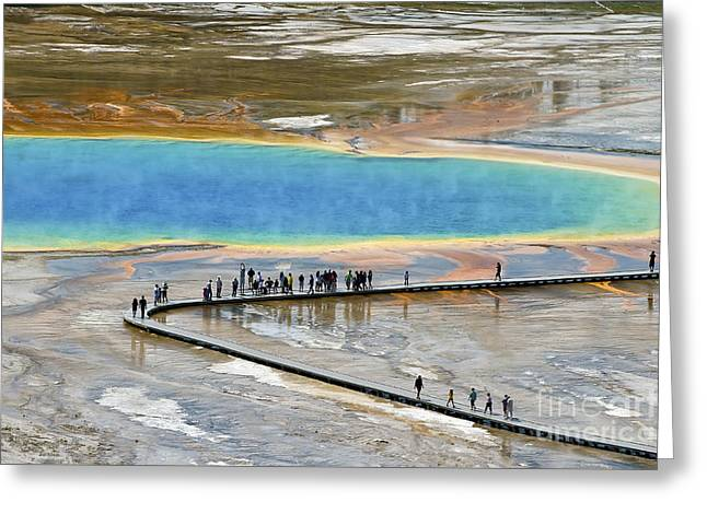 Grand Prismatic Spring Greeting Card by Teresa Zieba