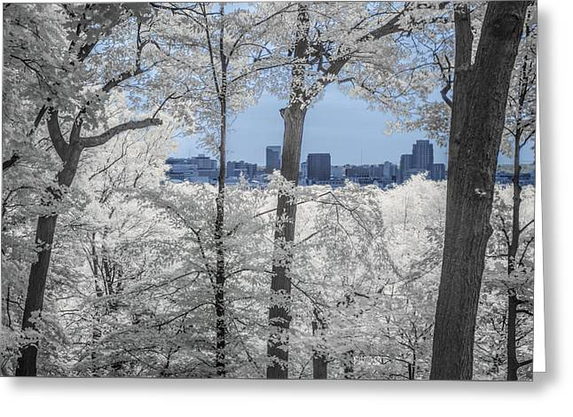 Randy Greeting Cards - Grand Rapids Michigan Cityscape in Infrared Greeting Card by Randall Nyhof