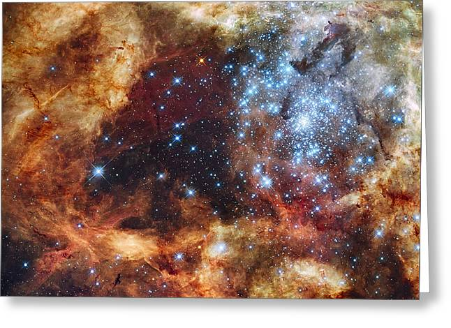Grand Star Forming - A  Stellar Nursery Greeting Card by Mark Kiver