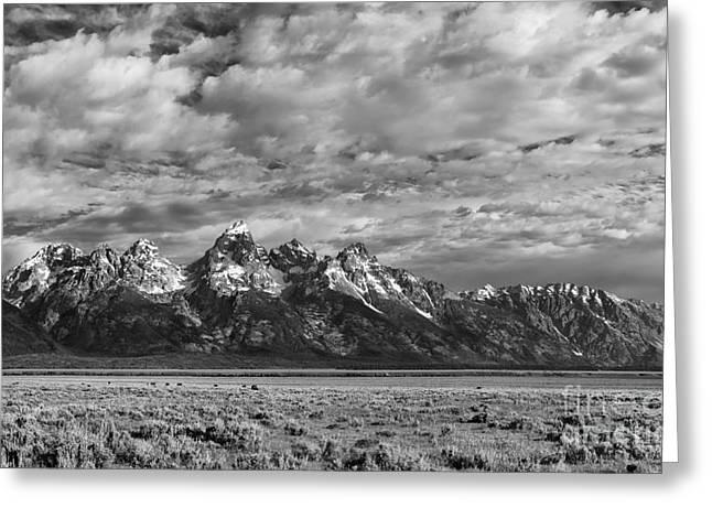 Grand Teton Majesty Greeting Card by Sandra Bronstein