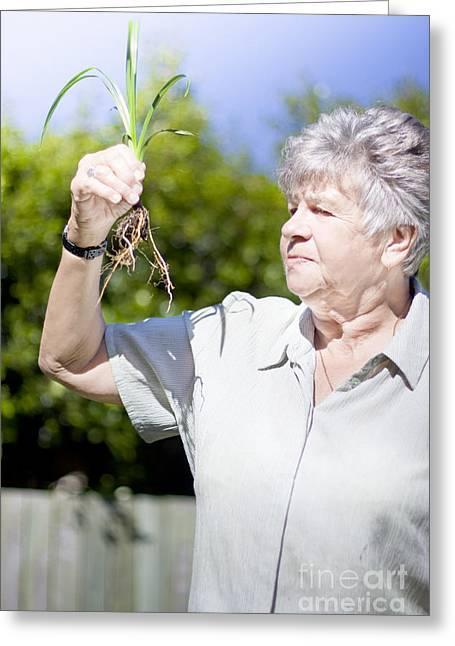 Gray Hair Greeting Cards - Grandmother In Her Garden Greeting Card by Ryan Jorgensen