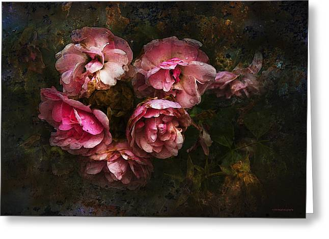 Grandmother's Roses Greeting Card by Ron Jones