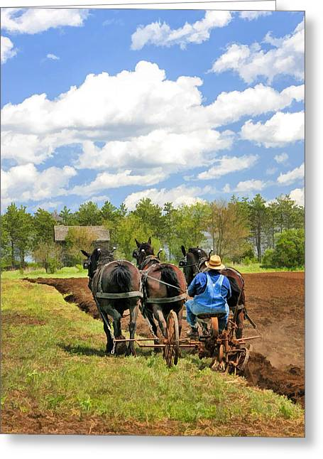 Overalls Greeting Cards - Grandpa and His Team of Horses at Old World Wisconsin Greeting Card by Christopher Arndt