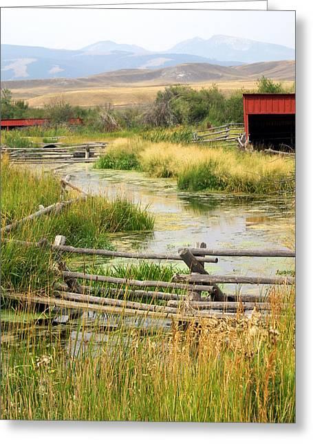 Marty Koch Greeting Cards - Grants Khors Ranch Vertical Greeting Card by Marty Koch