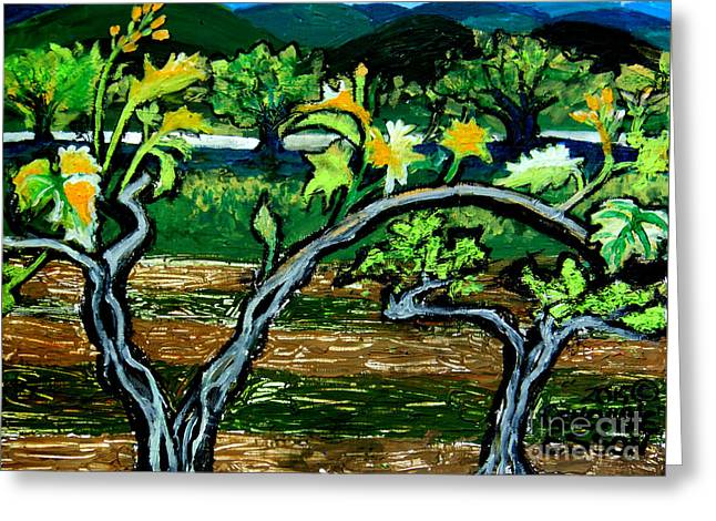 Blue Grapes Drawings Greeting Cards - Grape Vines In Augusta Wine Country Greeting Card by Genevieve Esson