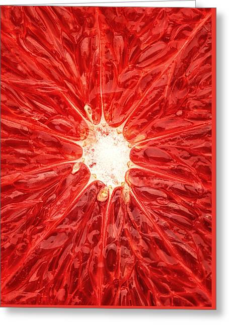 Insides Greeting Cards - Grapefruit close-up Greeting Card by Johan Swanepoel