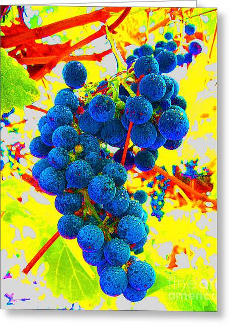 Grape Vineyard Greeting Cards - Grapes Greeting Card by Jerome Stumphauzer