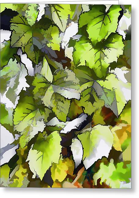 Grapes Leaves In A Vineyard Greeting Card by Lanjee Chee