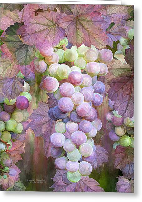 Grapes On Vine Greeting Cards - Grapes Of Many Colors Greeting Card by Carol Cavalaris