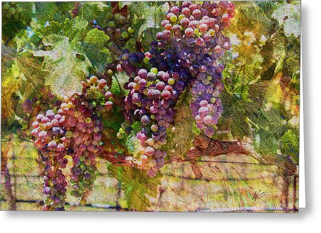Blue Grapes Photographs Greeting Cards - Grapes on the Vine Greeting Card by Kiki Art