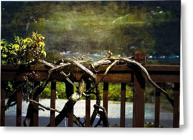 Keuka Greeting Cards - Grapevine on Keuka Balcony Greeting Card by Alison Squiers