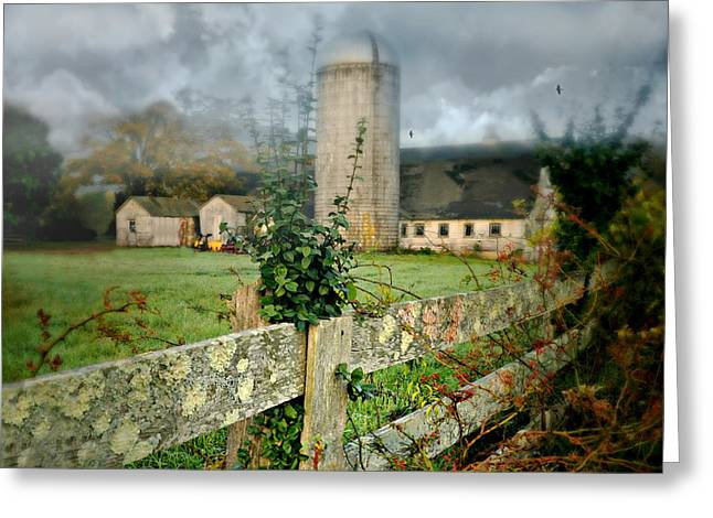 Home Grown Photographs Greeting Cards - Grass Roots Greeting Card by Diana Angstadt