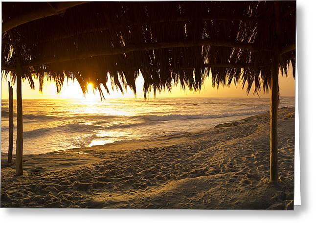 Sean Davey Greeting Cards - Grass Shack Sunset Greeting Card by Sean Davey