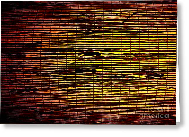Illuminate Greeting Cards - Grass Weave Greeting Card by Tim Townsend