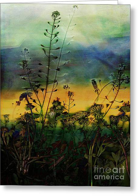 Prairie Sunset Landscape Art Print Greeting Cards - Grasslands 10 Greeting Card by Vinson Krehbiel