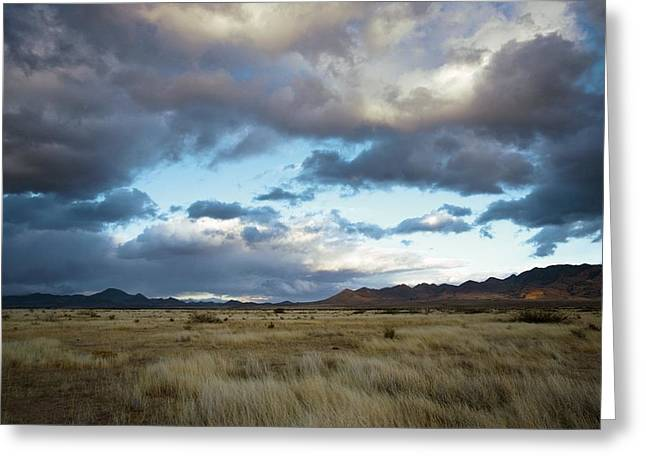 Portals Greeting Cards - Grasslands Near Portal Greeting Card by Bob Gibbons