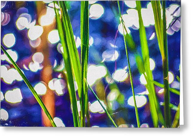 Black Painted Edges Greeting Cards - Grassy Glitter by the Pond Edge Greeting Card by Black Brook Photography