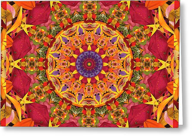 Chakra Rainbow Greeting Cards - Gratitude Greeting Card by Bell And Todd