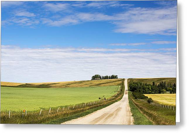 Gravel Road Greeting Cards - Gravel Road Climbing A Hill Greeting Card by Michael Interisano