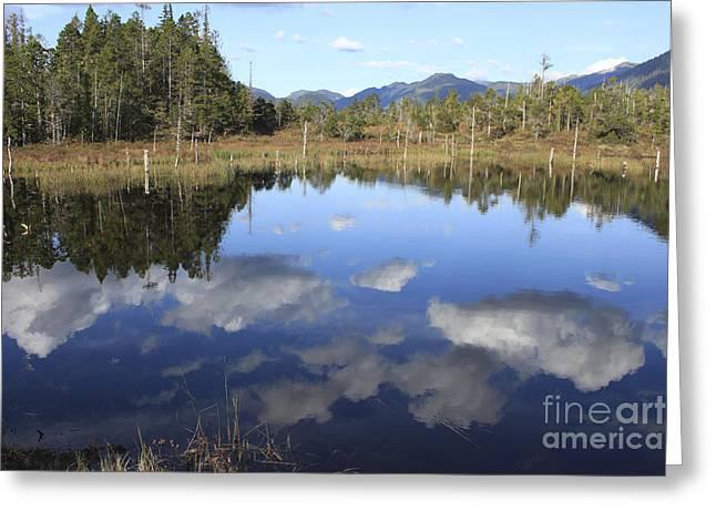 Blue Green Water Greeting Cards - Gravina Island Lake Greeting Card by Carolyn Brown