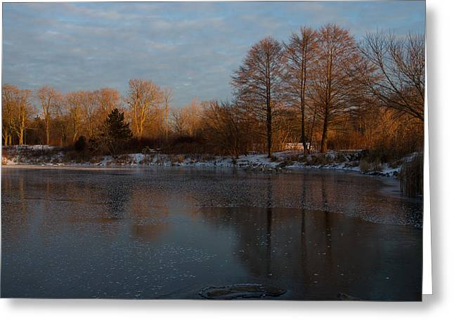 Warm Tones Greeting Cards - Gray and Amber - an Early Winter Morning on the Lake Shore Greeting Card by Georgia Mizuleva