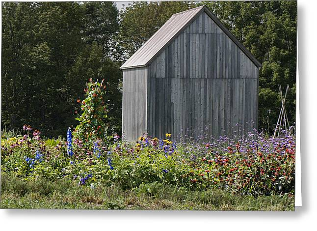 Best Sellers -  - Maine Farms Greeting Cards - Gray barn in garden Greeting Card by Jack Goldberg
