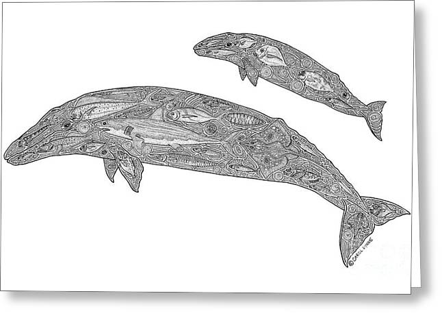 Whale Drawings Greeting Cards - Gray Whale and Calf Greeting Card by Carol Lynne