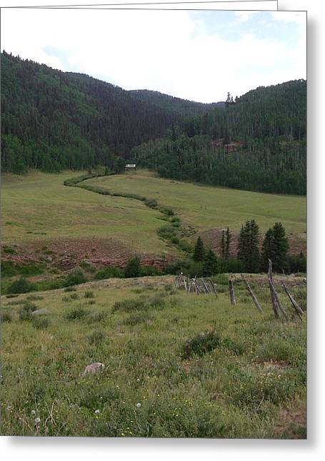 Creekbed Greeting Cards - Grazing Lands Greeting Card by Peter  McIntosh