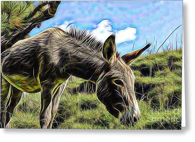 Donkey Greeting Cards - Grazing Greeting Card by Marvin Blaine