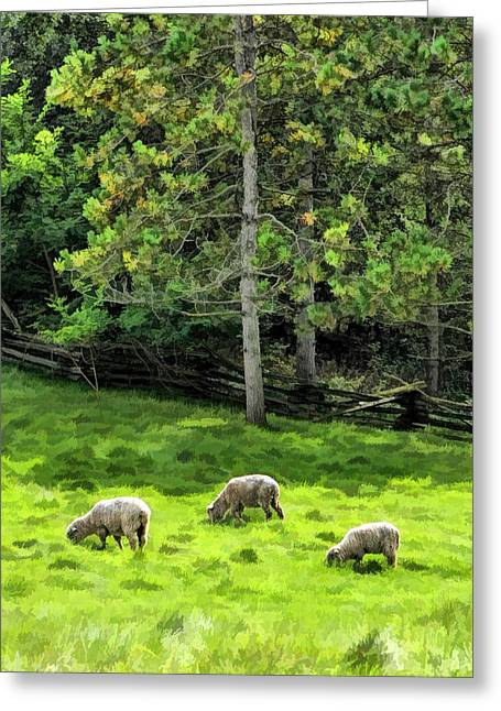 Bygone Greeting Cards - Grazing Sheep at Old World Wisconsin Greeting Card by Christopher Arndt