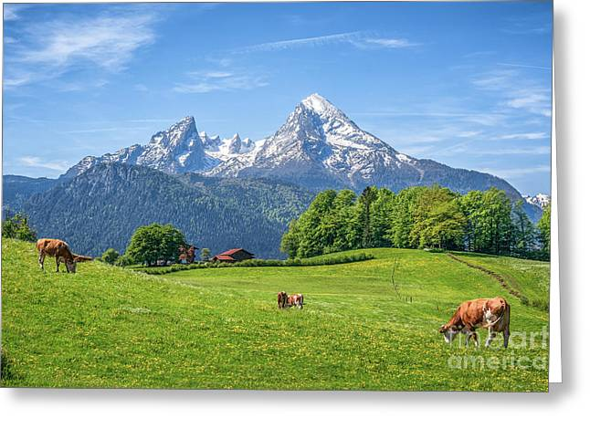 Grazing The Alps Greeting Card by JR Photography