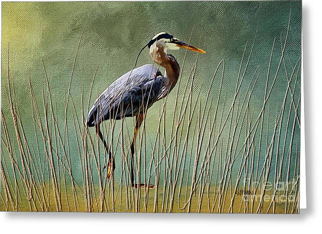Great Blue At The Beach Greeting Card by Lois Bryan