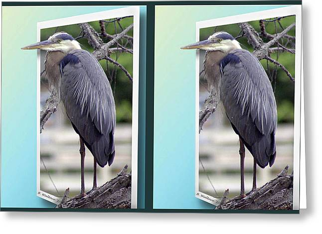Bule Greeting Cards - Great Blue Heron - Gently cross your eyes and focus on the middle image Greeting Card by Brian Wallace