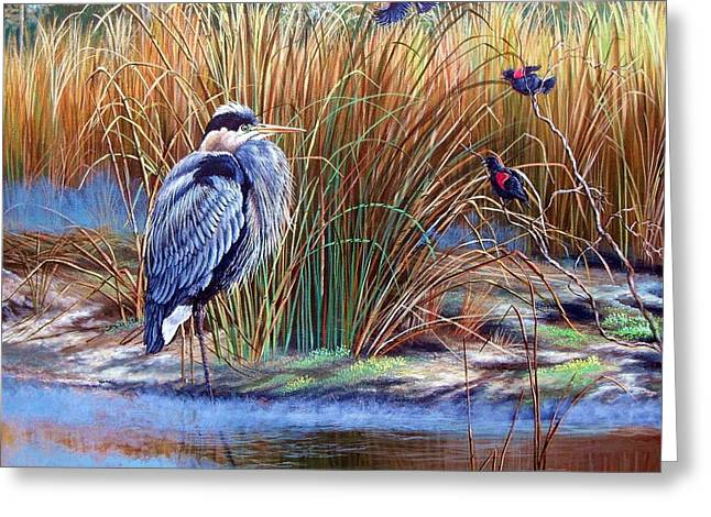 Wildlife Refuge. Greeting Cards - Great Blue Heron- An Interrupted Repose Greeting Card by Daniel Butler