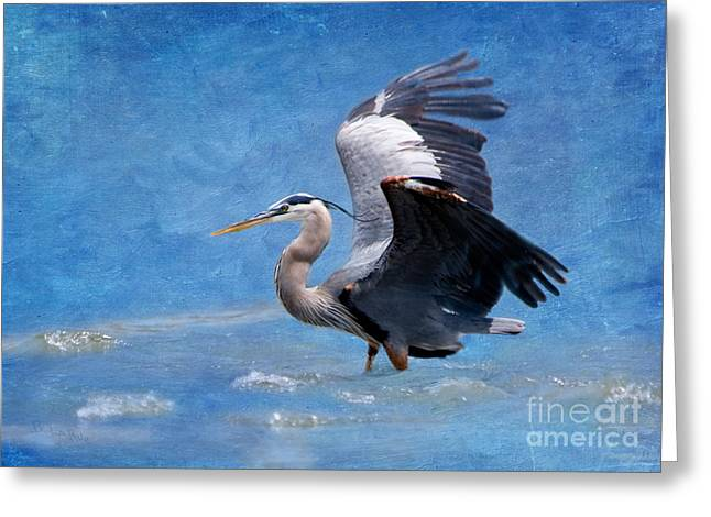 Great Birds Digital Greeting Cards - Great Blue Heron  Greeting Card by Betty LaRue