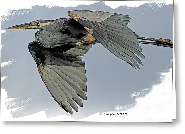 Great Blue Heron Flight Greeting Card by Larry Linton