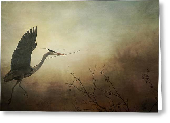 Cvnp Greeting Cards - Great Blue Heron In Flight - Textured Greeting Card by Sharon Norman