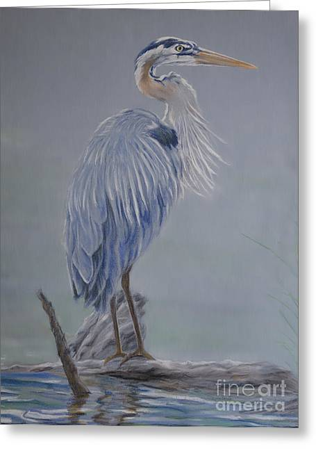 Great Birds Pastels Greeting Cards - Great Blue Heron Greeting Card by Kathryn Yoder