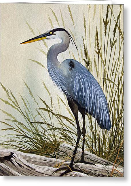 Wildlife Watercolor Greeting Cards - Great Blue Heron Shore Greeting Card by James Williamson