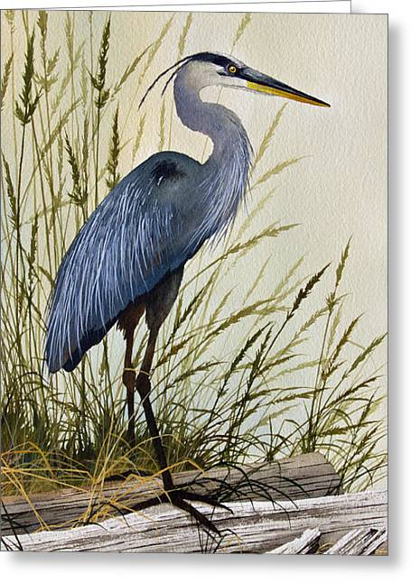 Wildlife Watercolor Greeting Cards - Great Blue Heron Splendor Greeting Card by James Williamson
